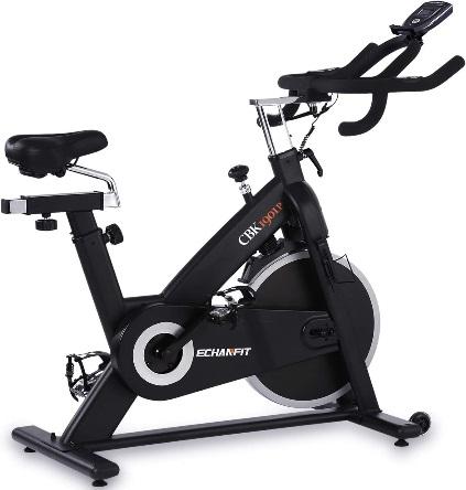 ECHANFIT Magnetic Stationary Exercise Bike